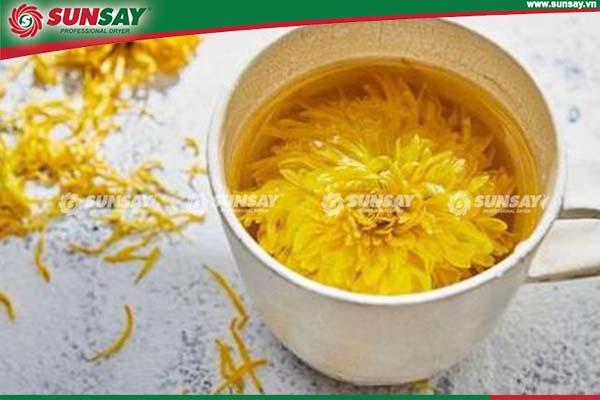 Trà hoa cúc sấy lạnh là loại trà luôn được ưa chuộng