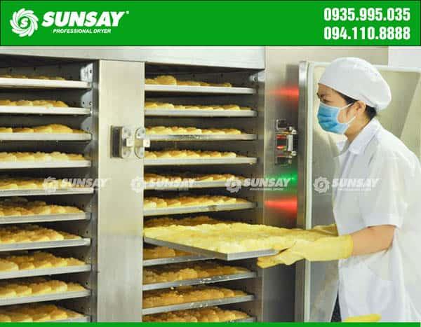 Máy sấy lạnh SUNSAY chuyên sáy dứa xuất khẩu
